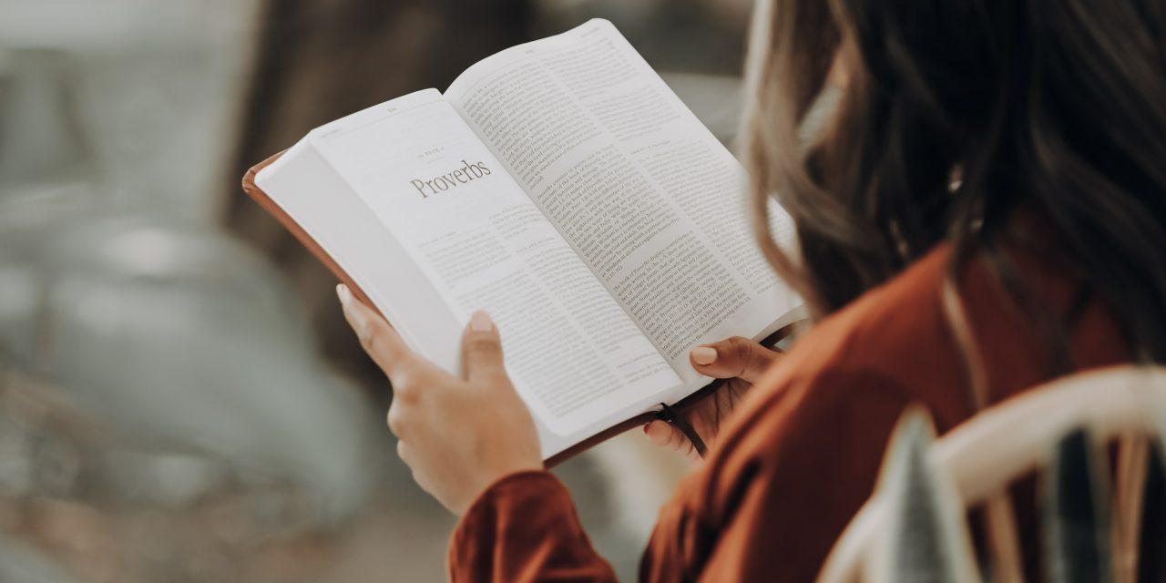 Hoy es Día Internacional del Libro: Estas son las obras que todo católico debe leer