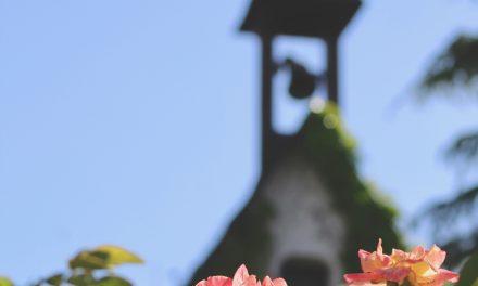 Carta del Editor: «Hemos extrañado el entorno familiar y reconfortante de la iglesia; es hora de reencontrarse»