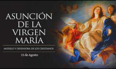 Asunción Virgen María: Papa Francisco reza para que Ella nos ayude a ser signo de esperanza en el mundo