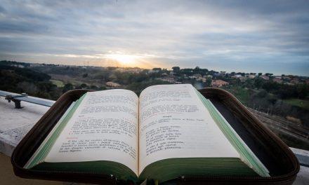 Impactante mensaje del Papa Francisco por la Jornada Mundial de Oración por el Cuidado de la Creación
