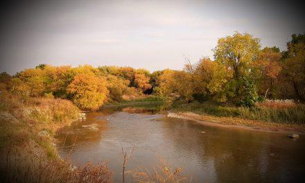 La creación de Dios en fotografías. Hermoso otoño en Toronto, la estación más amada de Canadá
